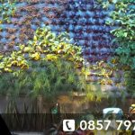 jasa pembuatan vertical garden bintaro