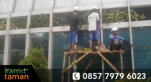 tukang taman vertical garden bsd