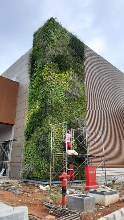 jasa vertical garden